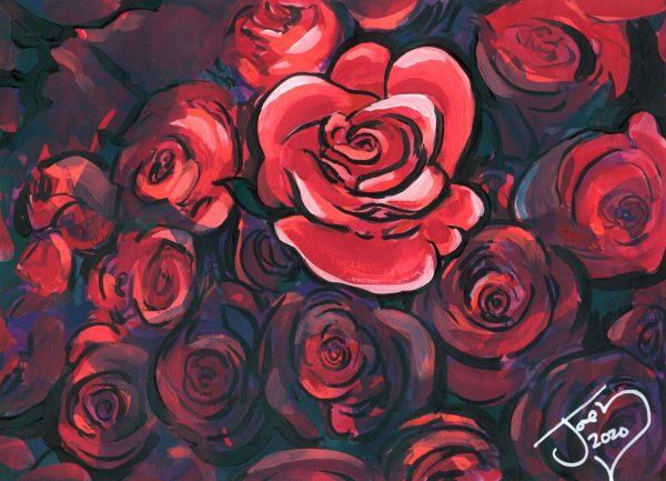 St. Joseph's Day Roses